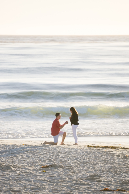 brendan + betsy carmel beach california proposal-22